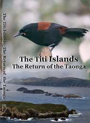 2011 The-Titi-Islands--Return-of-a-Tonga-
