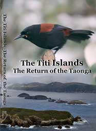 2011 The-Titi-Islands--Return-of-a-Tonga-