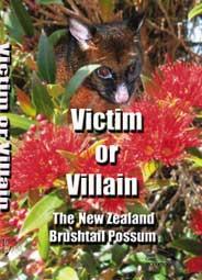 2014 Victim-or-Villain
