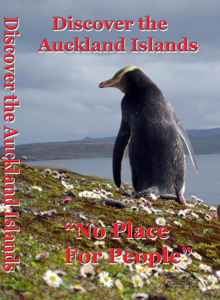 Discover the Auckland Islands